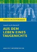 Cover-Bild zu Joseph von Eichendorff: Aus dem Leben eines Taugenichts von Eichendorff, Josef von