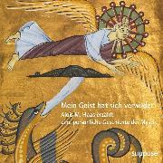 Cover-Bild zu Haas, Alois M.: Mein Geist hat sich verwildet (Audio Download)