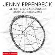 Cover-Bild zu Erpenbeck, Jenny: Gehen, ging, gegangen