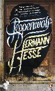 Cover-Bild zu Hesse, Hermann: Steppenwolf