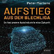 Cover-Bild zu Mertens, Peter: Aufstieg aus der Blechliga (Audio Download)