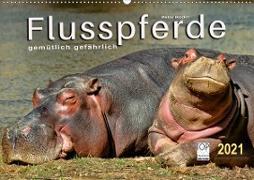 Cover-Bild zu Flusspferde - gemütlich gefährlich (Wandkalender 2021 DIN A2 quer) von Roder, Peter