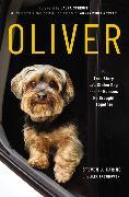 Cover-Bild zu Oliver von Carino, Steven J.
