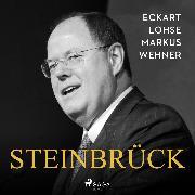 Cover-Bild zu Steinbrück (Audio Download) von Wehner, Markus
