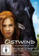 Cover-Bild zu Ostwind - Zusammen sind wir frei von Garnier, Katja von (Reg.)