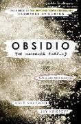 Cover-Bild zu Kaufman, Amie: Obsidio