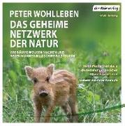 Cover-Bild zu Das geheime Netzwerk der Natur