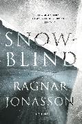 Cover-Bild zu Jonasson, Ragnar: Snowblind (eBook)