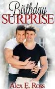 Cover-Bild zu Ross, Alex E.: Birthday Surprise (Gay Romance, MM, Romance, Gay Fiction, MM Romance Book 1) (eBook)