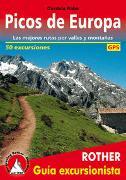Cover-Bild zu Rabe, Cordula: Picos de Europa (Rother Guía excursionista)