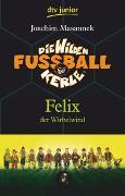 Cover-Bild zu Masannek, Joachim: Die Wilden Fußballkerle Band 2