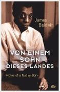 Cover-Bild zu Baldwin, James: Von einem Sohn dieses Landes (eBook)