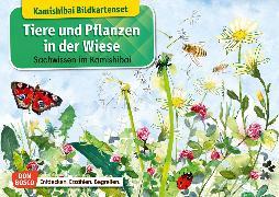 Cover-Bild zu Tiere und Pflanzen in der Wiese. Kamishibai Bildkartenset von Stöckl-Bauer, Katharina