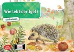 Cover-Bild zu Wie lebt der Igel? Kamishibai Bildkartenset von Stöckl-Bauer, Katharina