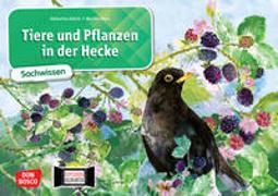 Cover-Bild zu Tiere und Pflanzen in der Hecke. Kamishibai Bildkartenset von Stöckl-Bauer, Katharina