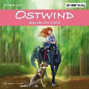 Cover-Bild zu Schwarz, Rosa: Ostwind - Spuren im Wald (Audio Download)