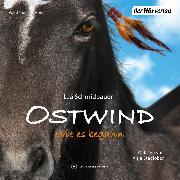 Cover-Bild zu Schmidbauer, Lea: Ostwind 7 - Wie es begann (Audio Download)