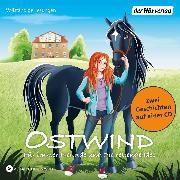 Cover-Bild zu Thilo: Ostwind - Für immer Freunde & Die rettende Idee (Audio Download)