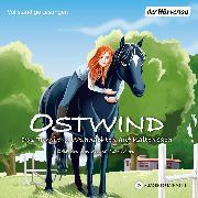 Cover-Bild zu Thilo: Ostwind. Das Turnier & Weihnachten auf Kaltenbach (Audio Download)