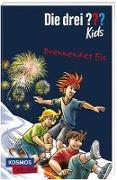 Cover-Bild zu Blanck, Ulf: Die drei ??? Kids 40: Brennendes Eis