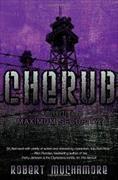 Cover-Bild zu Muchamore, Robert: Maximum Security