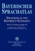 Cover-Bild zu König, Werner (Hrsg.): Sprachatlas von Bayerisch-Schwaben (SBS) / Wortgeographie VI