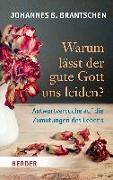 Cover-Bild zu Warum lässt der gute Gott uns leiden? von Brantschen, Johannes B.