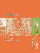 Cover-Bild zu Boberg, Britta: Cursus, Ausgaben A und N, Training, Arbeitsbuch