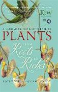 Cover-Bild zu Willis, Kathy: Plants: From Roots to Riches