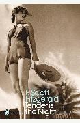 Cover-Bild zu Scott Fitzgerald, F.: Tender is the Night