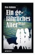 Cover-Bild zu Ashinze, Eva: Ein gefährliches Alter