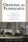 Cover-Bild zu Johnson, Kevin R.: Opening the Floodgates