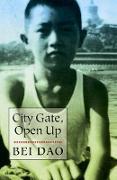 Cover-Bild zu Dao, Bei: City Gate, Open Up (eBook)