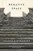 Cover-Bild zu Lleshanaku, Luljeta: Negative Space (eBook)