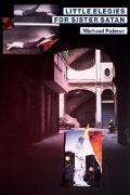 Cover-Bild zu Palmer, Michael: Little Elegies for Sister Satan (eBook)