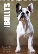Cover-Bild zu Behr, Jana: Bullys mit Charme - Französische Bulldoggen im Portrait (Wandkalender 2021 DIN A2 hoch)