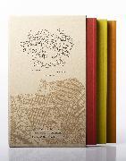 Cover-Bild zu Solnit, Rebecca: Infinite Cities