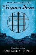 Cover-Bild zu Girdner, Emilyann: The Forgotten Dream: Map Edition