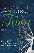 Cover-Bild zu Armentrout, Jennifer L.: Torn - Eine Liebe zwischen Licht und Dunkelheit