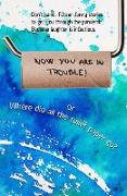 Cover-Bild zu Husum, James: Now You Are in Trouble! or Where Did All the Toilet Paper go? (eBook)