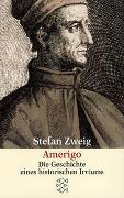 Cover-Bild zu Zweig, Stefan: Amerigo