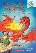 Cover-Bild zu West, Tracey: Power of the Fire Dragon: A Branches Book (Dragon Masters #4)