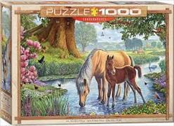 Cover-Bild zu The Fell Ponies