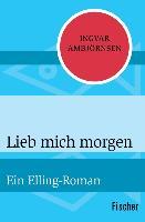 Cover-Bild zu Ambjörnsen, Ingvar: Lieb mich morgen (eBook)