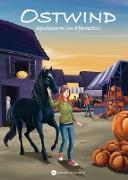 Cover-Bild zu Thilo: Ostwind - Spukalarm im Pferdestall (eBook)