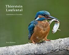 Cover-Bild zu Imhof, Alex (Vorwort v.): Thierstein Laufental