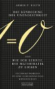 Cover-Bild zu Barth, Armin P.: Die Bändigung der Unendlichkeit oder Wie ich lernte, die Mathematik zu lieben