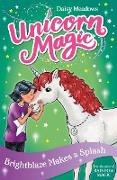 Cover-Bild zu Brightblaze Makes a Splash (eBook) von Meadows, Daisy