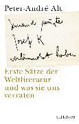 Cover-Bild zu Alt, Peter-André: 'Jemand musste Josef K. verleumdet haben ...' (eBook)