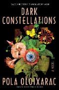 Cover-Bild zu Oloixarac, Pola: Dark Constellations (eBook)